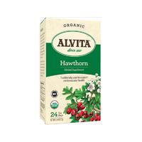 Alvita 天然草药山楂浆果茶 24袋(促进消化)