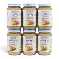 Biobim 标兵 婴儿有机什锦小麦混合水果泥 6瓶x200g (8个月以上)